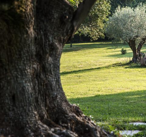 © Pierpaolo_Romano_2014